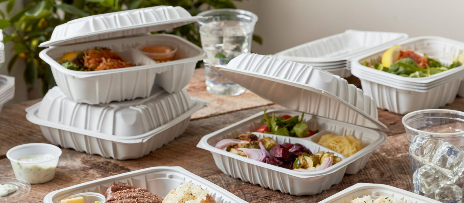 EARTHCHOICE MFPP HINGED LID CONTAINERS