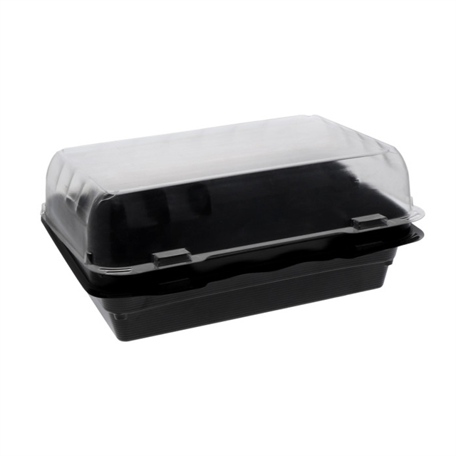 OPS SNACKBOX 8 X 5 DEEP 30 OZ-DUAL COL