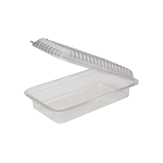 RFP -  8x4x2 Clear Hinged Container