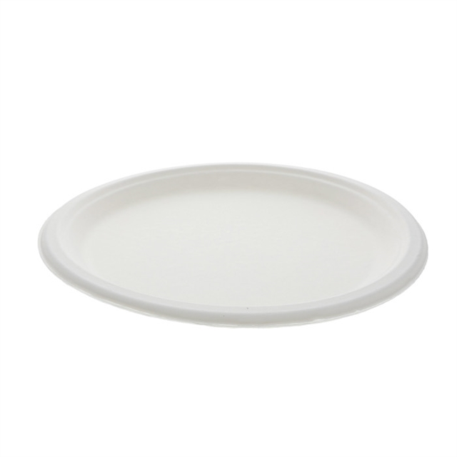 10IN BAGASSE PLATE EARTHPLUS