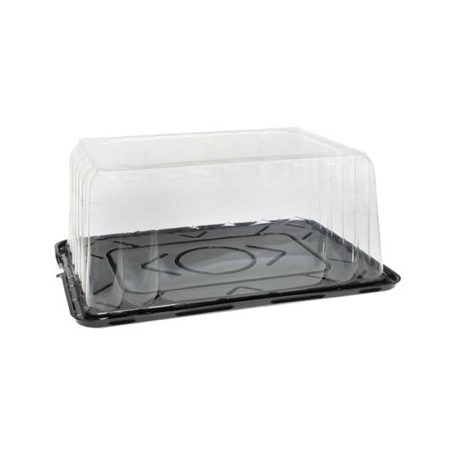 "1/4 SHT BLK BASE & 6"" ROSE DM W/LP TAB"