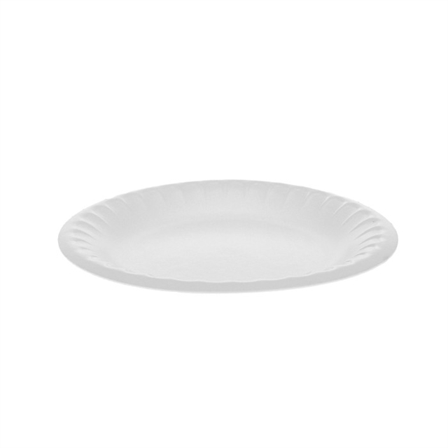 "6"" WHITE PLATE"